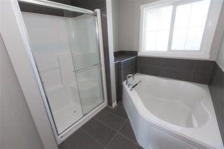 Photo 25: 17319 74 Street in Edmonton: Zone 28 House for sale : MLS®# E4160985