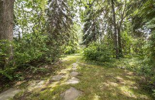 Photo 7:  in Edmonton: Zone 15 House for sale : MLS®# E4161185
