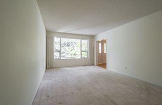 Photo 20:  in Edmonton: Zone 15 House for sale : MLS®# E4161185