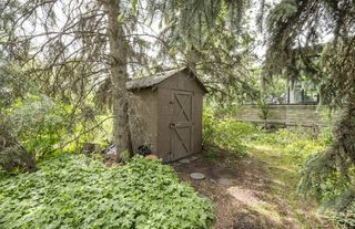 Photo 4:  in Edmonton: Zone 15 House for sale : MLS®# E4161185