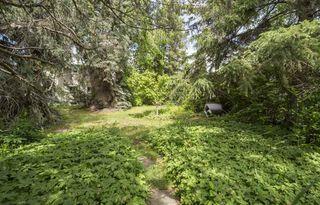 Photo 6:  in Edmonton: Zone 15 House for sale : MLS®# E4161185