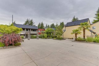 Photo 23: 250 5421 10 AVENUE in Delta: Tsawwassen Central Condo for sale (Tsawwassen)  : MLS®# R2465347