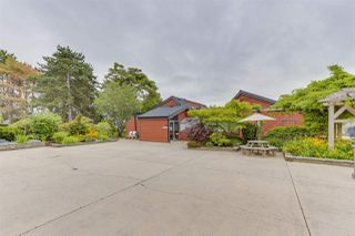 Photo 24: 250 5421 10 AVENUE in Delta: Tsawwassen Central Condo for sale (Tsawwassen)  : MLS®# R2465347