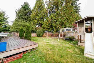 Photo 37: 12975 61 Avenue in Surrey: Panorama Ridge House for sale : MLS®# R2505089
