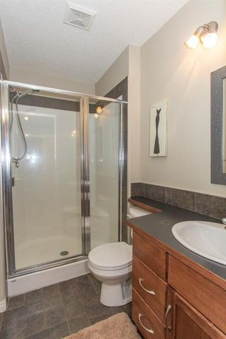 Photo 42: 732 Coopers Drive SW: Airdrie Detached for sale : MLS®# A1058696