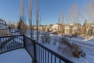 Photo 46: 732 Coopers Drive SW: Airdrie Detached for sale : MLS®# A1058696