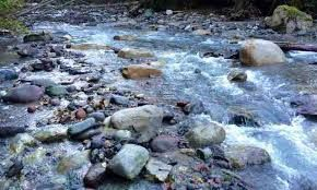 Photo 6: 3330 DESCARTES Place in Squamish: University Highlands Land for sale : MLS®# R2035489