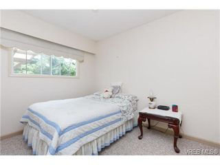 Photo 10: 3141 Blackwood St in VICTORIA: Vi Mayfair Single Family Detached for sale (Victoria)  : MLS®# 734623