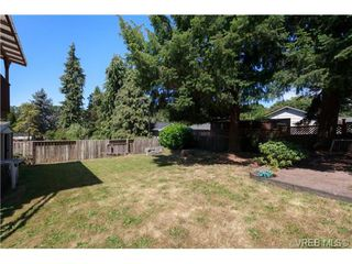 Photo 19: 3141 Blackwood St in VICTORIA: Vi Mayfair Single Family Detached for sale (Victoria)  : MLS®# 734623