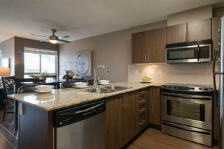 """Photo 1: D407 8929 202 Street in Langley: Walnut Grove Condo for sale in """"THE GROVE"""" : MLS®# R2160183"""