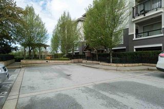 """Photo 14: D407 8929 202 Street in Langley: Walnut Grove Condo for sale in """"THE GROVE"""" : MLS®# R2160183"""