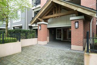"""Photo 13: D407 8929 202 Street in Langley: Walnut Grove Condo for sale in """"THE GROVE"""" : MLS®# R2160183"""