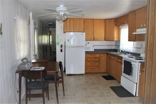 Photo 8: 36 145 KING EDWARD STREET in Coquitlam: Central Coquitlam Manufactured Home for sale : MLS®# R2185362