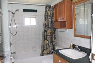 Photo 12: 36 145 KING EDWARD STREET in Coquitlam: Central Coquitlam Manufactured Home for sale : MLS®# R2185362