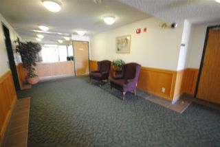 Photo 16: 201 10511 19 Avenue NW in Edmonton: Zone 16 Condo for sale : MLS®# E4119686