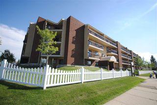 Photo 22: 201 10511 19 Avenue NW in Edmonton: Zone 16 Condo for sale : MLS®# E4119686