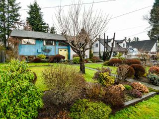 Photo 13: 440 4TH Avenue in CAMPBELL RIVER: CR Campbell River Central House for sale (Campbell River)  : MLS®# 806220