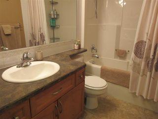 Photo 19: 15635 45 Street in Edmonton: Zone 03 House for sale : MLS®# E4147541