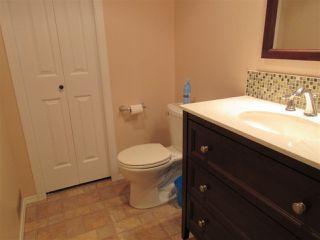 Photo 23: 15635 45 Street in Edmonton: Zone 03 House for sale : MLS®# E4147541