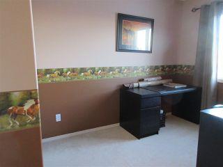 Photo 18: 15635 45 Street in Edmonton: Zone 03 House for sale : MLS®# E4147541