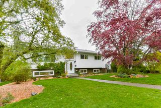 Photo 1: 5025 WOODSWORTH Street in Burnaby: Greentree Village House for sale (Burnaby South)  : MLS®# R2361633
