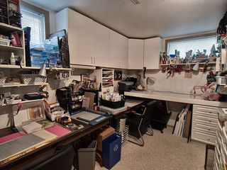 Photo 14: 12115 53 Street in Edmonton: Zone 06 House for sale : MLS®# E4156641