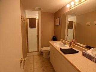 Photo 15: 12115 53 Street in Edmonton: Zone 06 House for sale : MLS®# E4156641