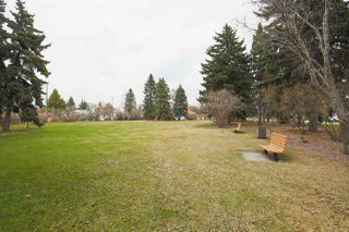 Photo 25: 11309 115 Street in Edmonton: Zone 08 House for sale : MLS®# E4156686