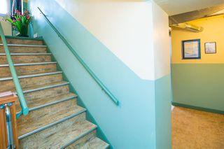 Photo 15: 11309 115 Street in Edmonton: Zone 08 House for sale : MLS®# E4156686
