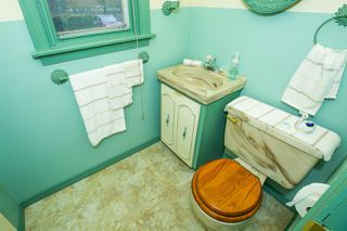 Photo 12: 11309 115 Street in Edmonton: Zone 08 House for sale : MLS®# E4156686