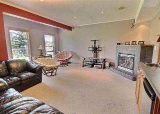 Photo 25: 11807 173 Avenue in Edmonton: Zone 27 House for sale : MLS®# E4156896