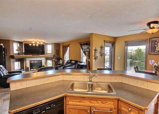 Photo 13: 11807 173 Avenue in Edmonton: Zone 27 House for sale : MLS®# E4156896