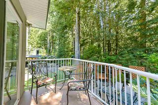 Photo 16: 1803 CAMELBACK Court in Coquitlam: Westwood Plateau House for sale : MLS®# R2380832