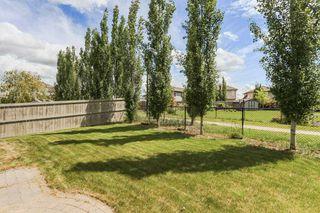 Photo 29: 11445 14A Avenue in Edmonton: Zone 55 House for sale : MLS®# E4162412