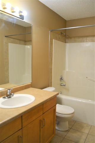 Photo 20: 167 EASTON Road in Edmonton: Zone 53 House for sale : MLS®# E4162939