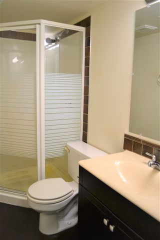 Photo 23: 167 EASTON Road in Edmonton: Zone 53 House for sale : MLS®# E4162939