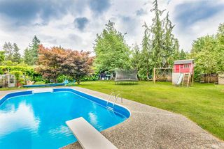 Photo 5: 21716 117 Avenue in Maple Ridge: West Central House for sale : MLS®# R2383577