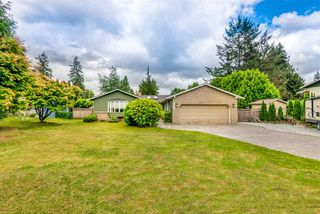 Photo 9: 21716 117 Avenue in Maple Ridge: West Central House for sale : MLS®# R2383577