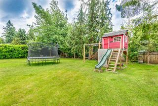 Photo 10: 21716 117 Avenue in Maple Ridge: West Central House for sale : MLS®# R2383577