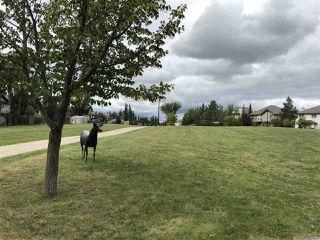 Photo 24: 410 1589 GLASTONBURY Boulevard in Edmonton: Zone 58 Condo for sale : MLS®# E4164133