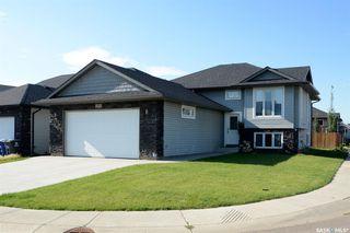 Photo 2: 251 Pringle Lane in Saskatoon: Stonebridge Residential for sale : MLS®# SK783836