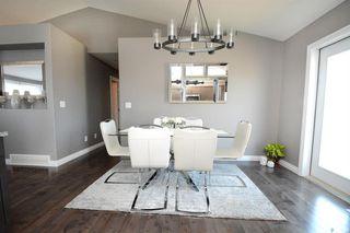 Photo 16: 251 Pringle Lane in Saskatoon: Stonebridge Residential for sale : MLS®# SK783836