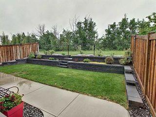 Photo 25: 5903 175 Avenue in Edmonton: Zone 03 House for sale : MLS®# E4200949