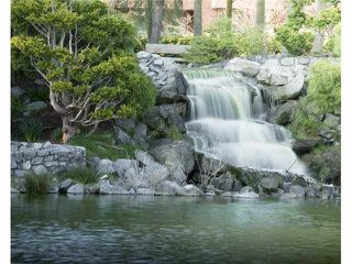 "Photo 15: 211 7600 FRANCIS Road in Richmond: Broadmoor Condo for sale in ""WINDSOR GREENE"" : MLS®# V1130653"