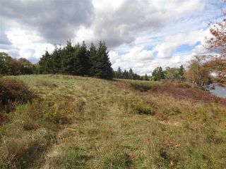 Photo 4: Lot 1-BC Borgels Drive in Chester Basin: 405-Lunenburg County Vacant Land for sale (South Shore)  : MLS®# 201615695