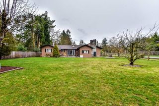 "Photo 5: 24343 65 Avenue in Langley: Salmon River House for sale in ""Williams Park"" : MLS®# R2235385"