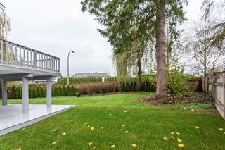 Photo 16: 22719 KENDRICK PLACE in Maple Ridge: East Central House for sale : MLS®# R2135318