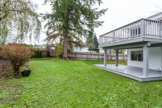Photo 17: 22719 KENDRICK PLACE in Maple Ridge: East Central House for sale : MLS®# R2135318