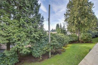 Photo 15: 412 555 W 28th Street in North Vancouver: Upper Lonsdale Condo for sale : MLS®# R2246023