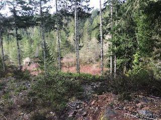 Photo 6: 5595 East Sooke Rd in SOOKE: Sk East Sooke Land for sale (Sooke)  : MLS®# 784096